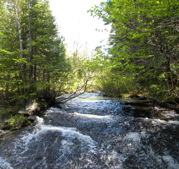 Moto trail enduro - Une pause près de la rivière