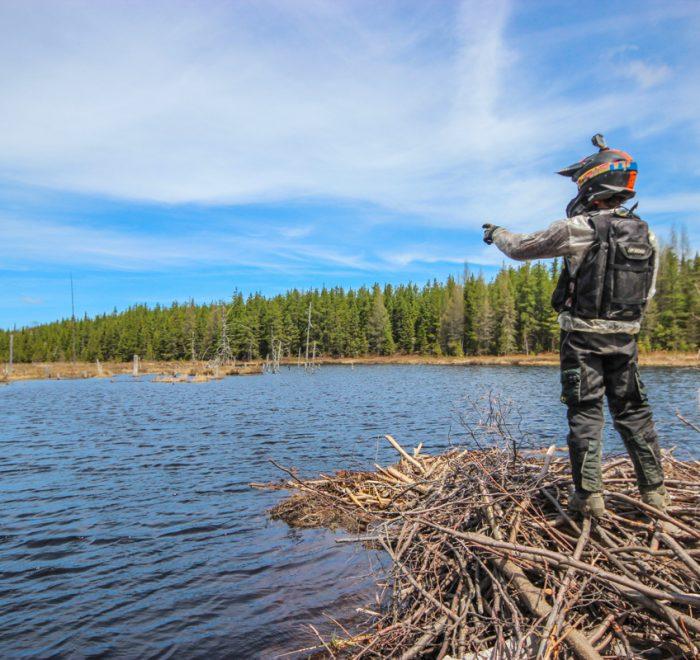 Vue au loin d'un barrage de castor - Rando Raid Canada